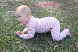 Great for learning to crawl in!